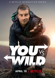 https://leschroniquesdejeremydaflon.wordpress.com/2019/04/11/you-vs-wild-jai-tue-bear-grylls/