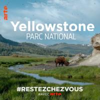 Yellowstone en plein hiver